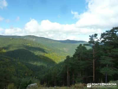 Parque Natural Sierra de Cebollera (Los Cameros) - Acebal Garagüeta;belenes vivientes madrid batuec